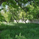 زمین کشاورزی گرمابسرد دماوند