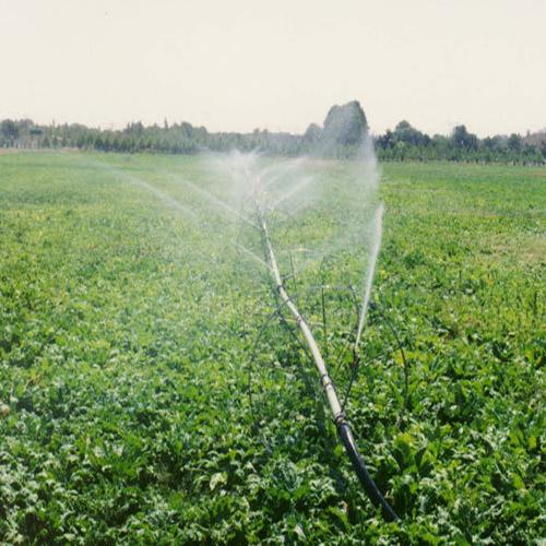 فروش زمین کشاورزی در زان