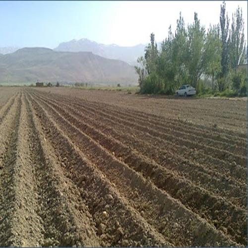 فروش زمین کشاورزی در جابان